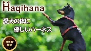 ハキハナ犬用ハーネス