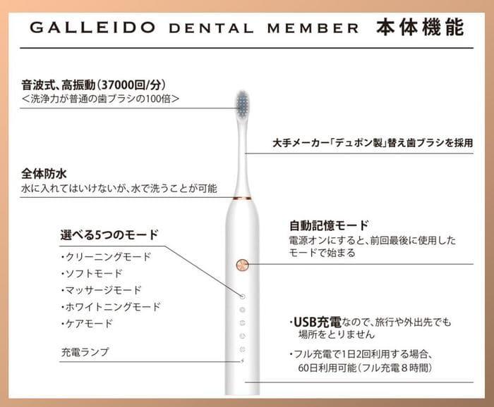 ガレイドデンタルメンバー電動歯ブラシ