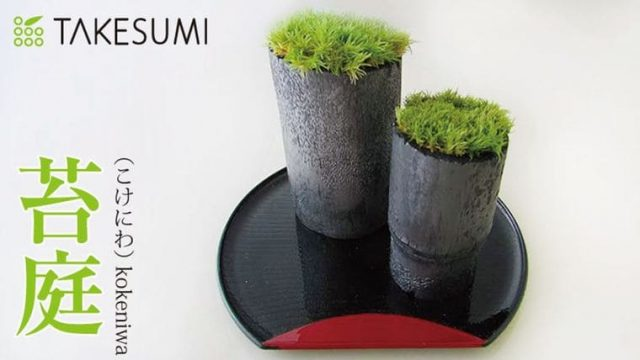 竹炭(TAKESUMI)