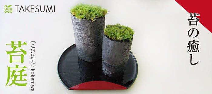 竹炭 苔庭